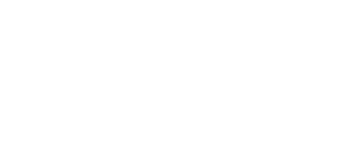 Fish Consulting Logo